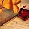 roza_i_pioro