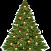 christmas-tree-1808558_960_720